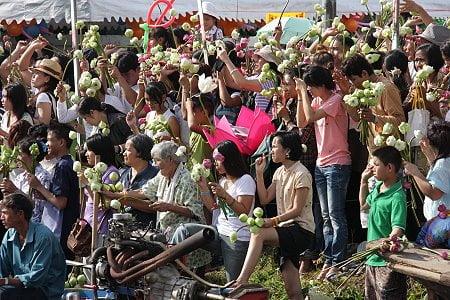 lotus flower festival
