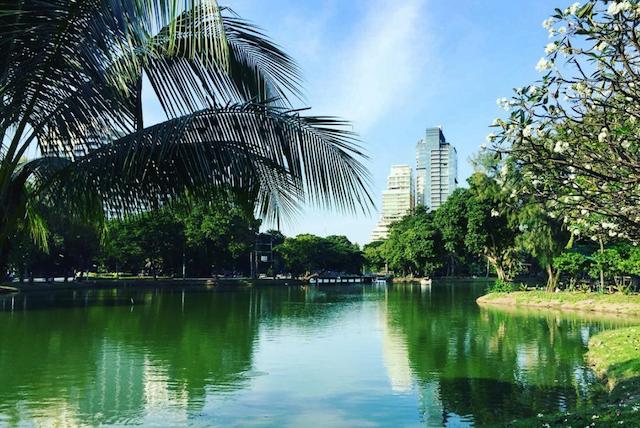Een dag in Lumpini Park in Bangkok: wat te doen?